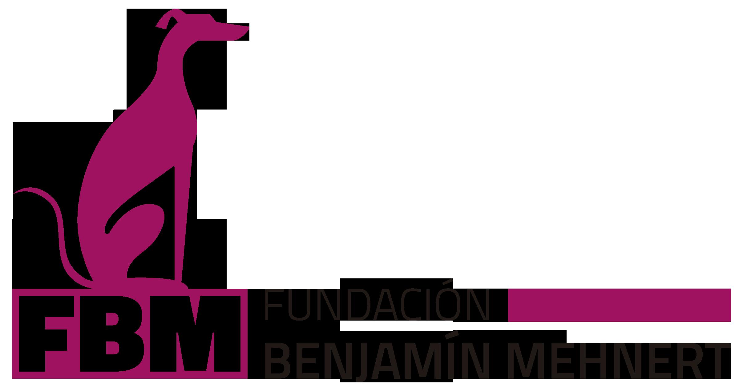 Fundacion bm