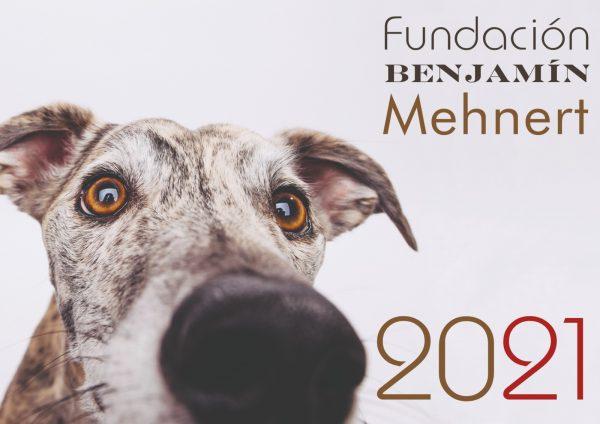 Portada calendario 2021 de Fundación Benjamín Mehnert con galgo